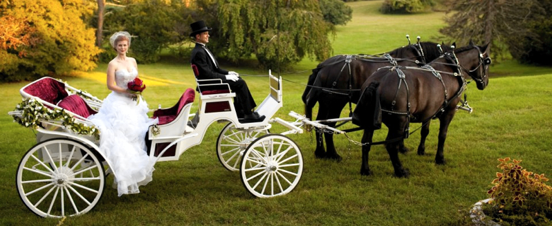 wedding_carriage.jpg