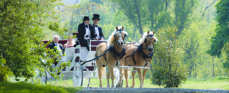 Carriage Weddings